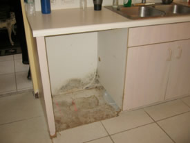 water damage case study