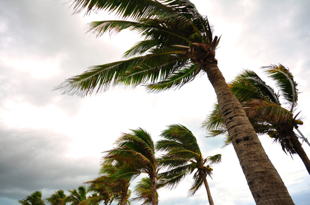 Hurricane Matthew Treasure Coast
